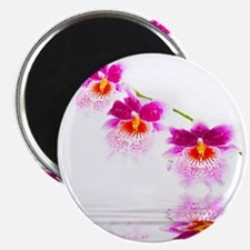 Three Oncidium Pink and White Orchids Magnet