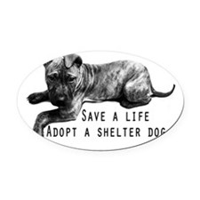 Save a Life Oval Car Magnet
