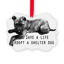 Save a Life Ornament