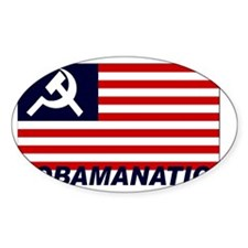 Obamanation Decal
