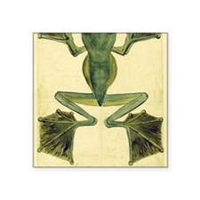 """Wallaces Flying Frog large Square Sticker 3"""" x 3"""""""
