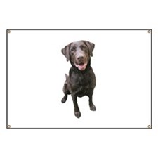 Unique Labrador Banner