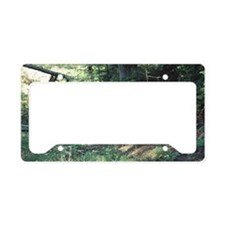 """""""Mommy  Playing  With  Cubs"""" License Plate Holder"""