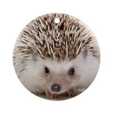 Rosie hedgehog Round Ornament