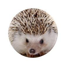 """Rosie hedgehog 3.5"""" Button"""
