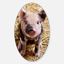 This Little Piggy Sticker (Oval)