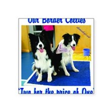 """Our Border Collies, Two for Square Sticker 3"""" x 3"""""""