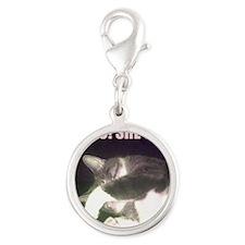 Funny 80th Birthday (Cat) Silver Round Charm
