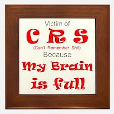 My Brain is Full-red Framed Tile