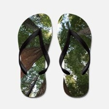 California Giant Redwoods Flip Flops