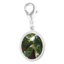 California Giant Redwoods Silver Oval Charm