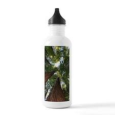 California Giant Redwo Water Bottle