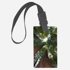 California Giant Redwoods Luggage Tag