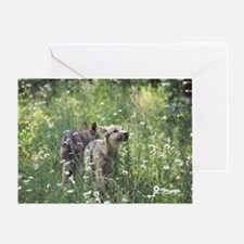 """Two  Cubs  Checking  Out  Their  Ne Greeting Card"
