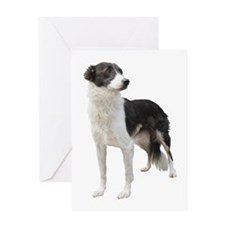 Funny Red border collie puppy Greeting Card