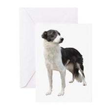 Cute Border collie Greeting Cards (Pk of 20)