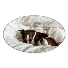Sleepy Jack Russel Brindle Decal