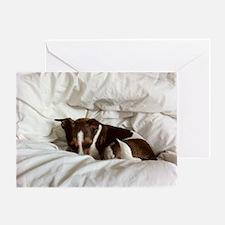 Sleepy Jack Russel Brindle Greeting Card