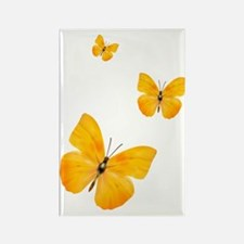 Apricot Sulphur Butterflies 3 Rectangle Magnet