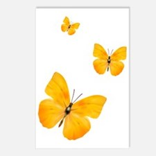 Apricot Sulphur Butterfli Postcards (Package of 8)