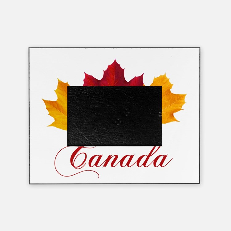 Frame it all canada - New Discounts