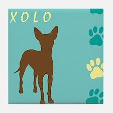 xoloitzcuintli paws Tile Coaster