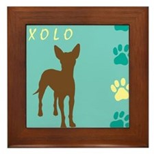 xoloitzcuintli paws Framed Tile