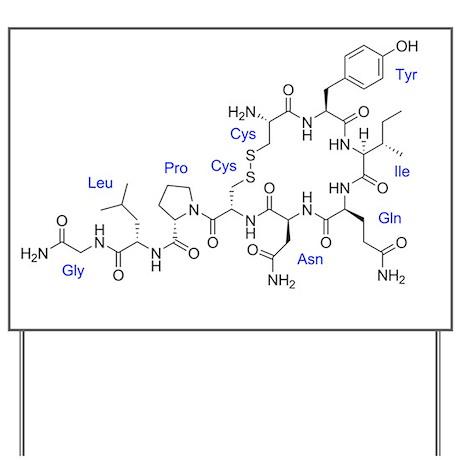 Oxytocin Yard Sign