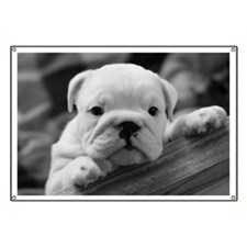 Bulldog Puppy Banner