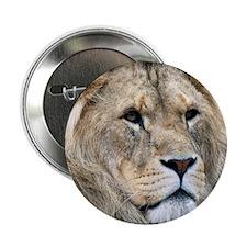 "Lion Panel Print 2.25"" Button"