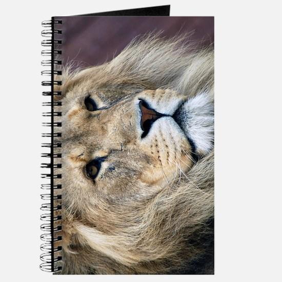 Lion iPhone 3G Journal
