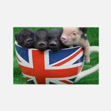 Tea Cup Piggies Rectangle Magnet