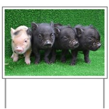 4 micro pigs in a row Yard Sign