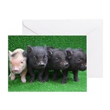 4 micro pigs in a row Greeting Card
