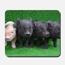 4 micro pigs in a row Mousepad