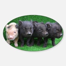 4 micro pigs in a row Decal