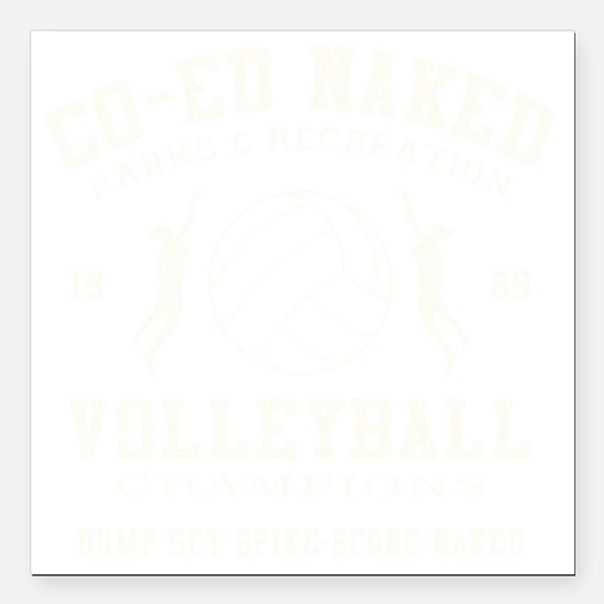 Funny Volleyball Car Magnets Cafepress
