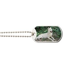 """Summertime  Bird  Watching"" Dog Tags"