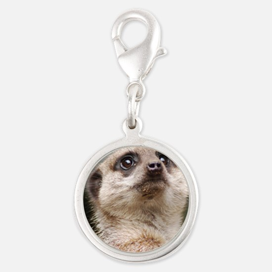 Meerkat Dry Board Silver Round Charm