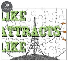 Like Attracts Like Puzzle