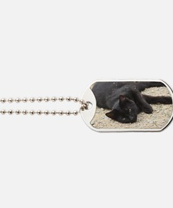 cat Dog Tags