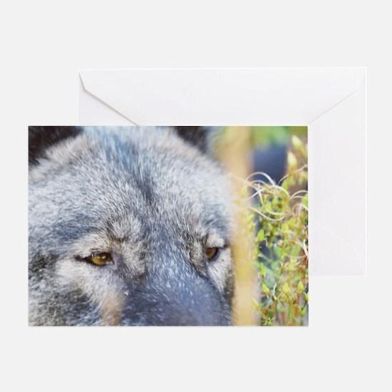 """Wolf  Eyes"" Greeting Card"