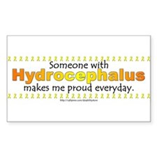 Hydrocephalus Pride Rectangle Decal