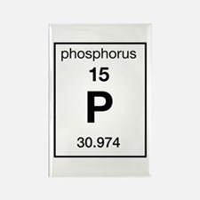 Phosphorus Rectangle Magnet