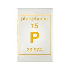 Phosphorus Rectangle Magnet