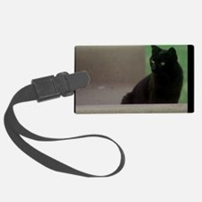 Kenner Stray in Laketown Luggage Tag