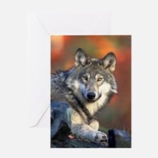 Wolf Wolves Lovers Greeting Card