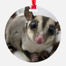 Sugar Glider Love Ornament