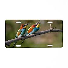 Pair European Bee-eaters Aluminum License Plate