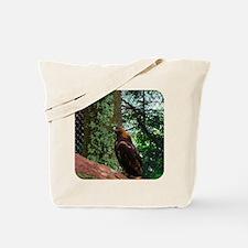 Grandfather Mountain Golden Eagle I Tote Bag